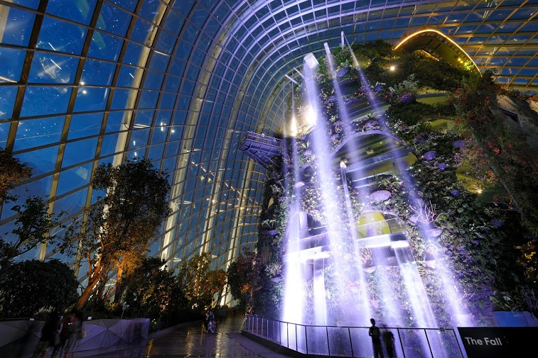 Cloud Forest - Waterfall at Night