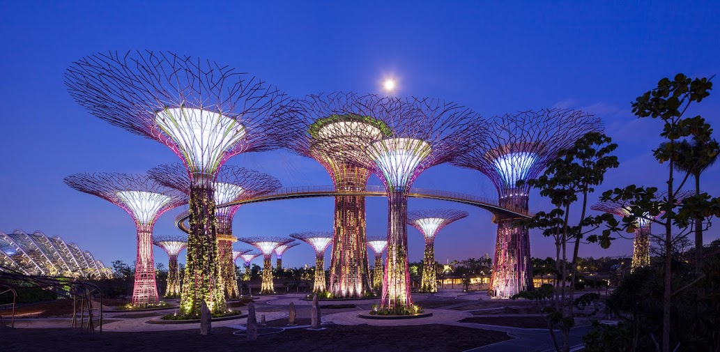 OCBC Skyway Supertrees - Night View